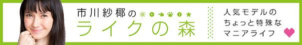 serial_ichikawasaya.jpg